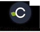 Center Flowers - Venta de Flores